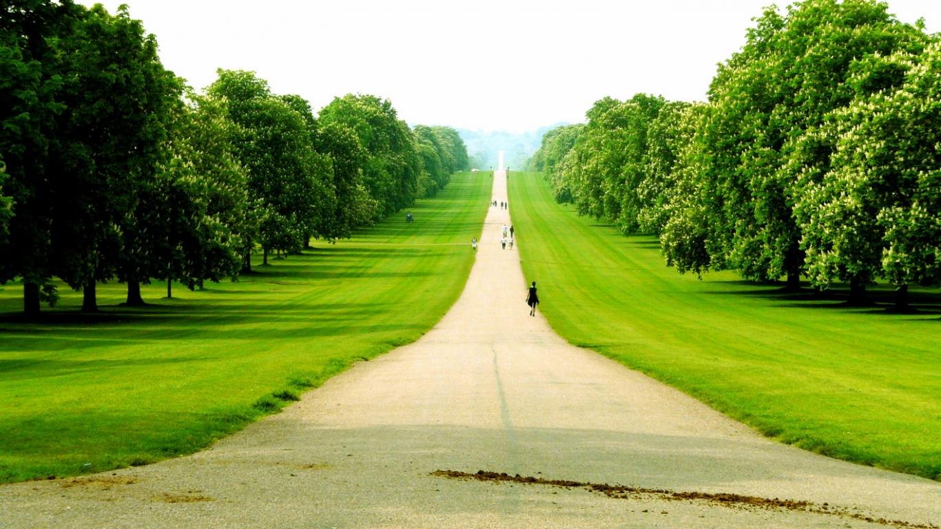 Camino en gran area verde 1366x768 fondo de pantalla 2325 for Casa con un camino